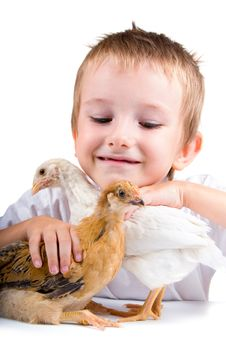 Free Funny Boy With Chickens Stock Photo - 15166710
