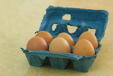 Free Six Eggs Royalty Free Stock Photos - 15166818