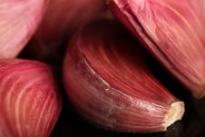 Garlic Cloves Macro Stock Photos