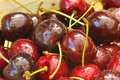 Free Sweet Cherries Royalty Free Stock Photos - 15171408