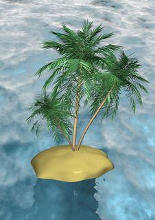 Free Three Palm-tree Royalty Free Stock Image - 15171396