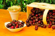 Free Sweet Cherries Royalty Free Stock Images - 15171459