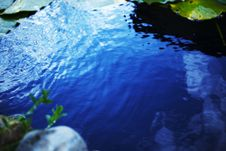 Free Raging Water Stock Image - 15171921