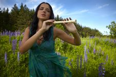 Free Attractive Girl With Flute Sitting In Summer Field Stock Photo - 15172190