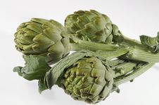Free Artichoke Royalty Free Stock Photo - 15174905