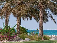 Free Middle Eastern Paradise Stock Image - 15175841