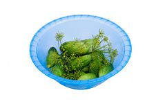 Free Cucumbers And  Dill In The Plastic Bowl Royalty Free Stock Image - 15176156