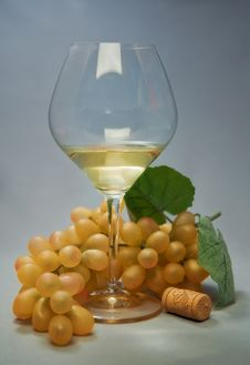 Free Still-life With Fruit And Wine Glass Stock Image - 15176251