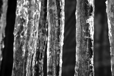 Free Icicles Stock Photography - 15176482