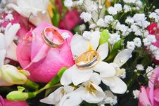 Free Rings On Roses Stock Photography - 15176682