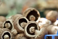 Free Heap Of Portobello Mushrooms, Landscape Stock Photo - 15177010