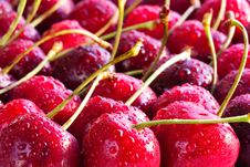 Free Cherries Royalty Free Stock Photo - 15177095