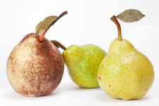 Free Pears Royalty Free Stock Photography - 15177967