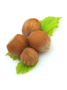 Free Four Ripe Wood Nuts Royalty Free Stock Photo - 15180175