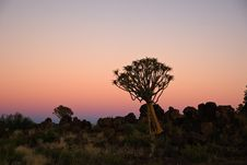 Free African Sunset Royalty Free Stock Images - 15180579