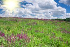 Free Landscape Stock Photo - 15181220