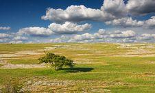 Free Landscape Royalty Free Stock Image - 15181566