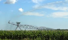 Free Irrigating A Corn Field Royalty Free Stock Photos - 15182398
