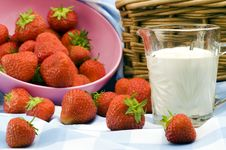 Free Strawberry Picnic Royalty Free Stock Photography - 15182407