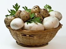 Free Quail Eggs And Mushrooms In The Basket Royalty Free Stock Images - 15182409