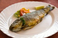Grilled Trout With Cream Butter Royalty Free Stock Image
