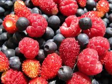 Free Assorted Fresh Berries Stock Images - 15184814