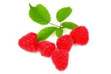 Free Raspberries Stock Photo - 15186130