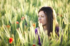 Free Beauty On Field Royalty Free Stock Image - 15188456