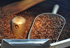 Coffee Beans Freshly Roasted Royalty Free Stock Image