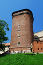Free Royal Wawel Castle In Cracow Royalty Free Stock Image - 15192506