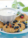 Free Cookies With Berries And Cup Of Milk Stock Photos - 15198583
