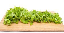 Free Green Lettuce Salad Slices Stock Image - 15190281