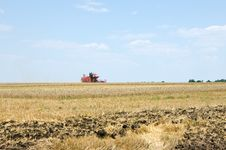 Free Harvest Stock Image - 15195111