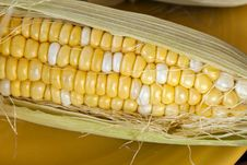 Free Corn On The Cob Royalty Free Stock Photos - 15196228