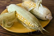 Free Corn In Husks On Yellow Plate Royalty Free Stock Photo - 15196425