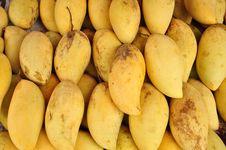 Free Yellow Mango In Thailand Royalty Free Stock Photos - 15198478