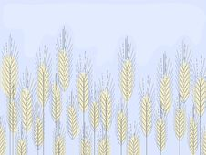 Free Wheat Field Royalty Free Stock Image - 15198826