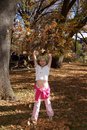 Free Girl Tossing Leaves Stock Photography - 1523852