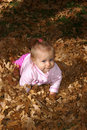 Free Baby Crawling In Leaves Stock Images - 1523854