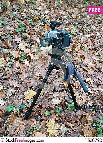 Free Digital Camera Recording Autumn Colors Stock Photo - 1520720