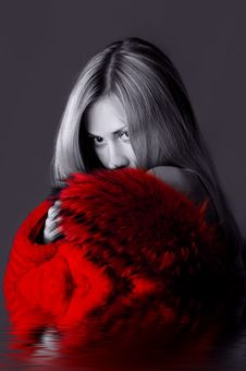Free Lady In Red Stock Images - 1520034