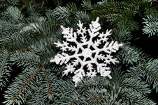 Free Snowflake On Fir Tree Royalty Free Stock Images - 1520699