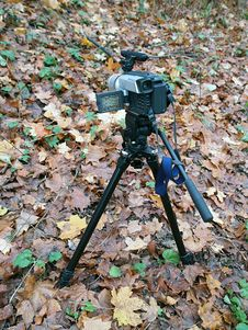 Free Digital Camera Recording Autumn Colors Stock Photo - 1520720