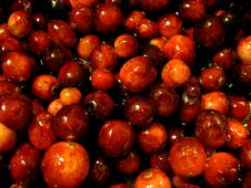 Cranberries Royalty Free Stock Photo