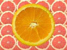 Orange Slice And Grapefruit Stock Image