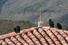 Black Vultures And A Cross In Andes Royalty Free Stock Image