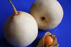 Free Nashi Pears And Physalis Stock Photos - 1528043