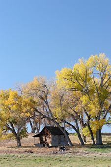 Free Autumn Shelter Royalty Free Stock Image - 1528106
