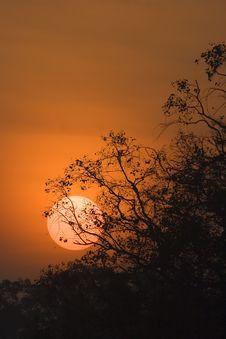 Free Sunrise Royalty Free Stock Images - 1529329