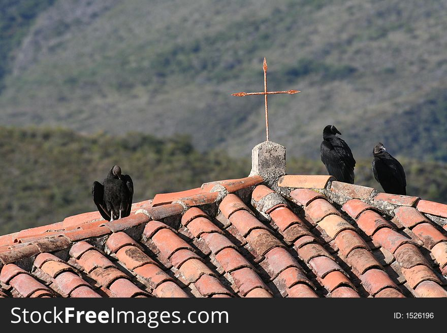 Black vultures and a cross in Andes